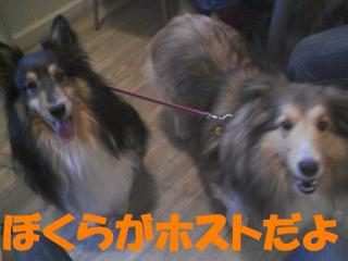 20100523_0000a.jpg