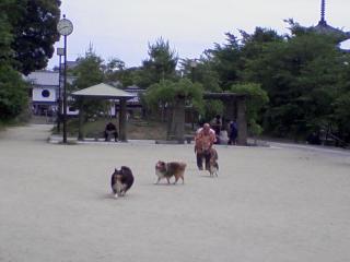 20100606_0004.jpg
