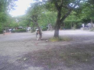 20100606_0006.jpg