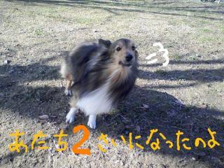 2011-01-02_0001a.jpg