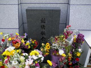 2011-01-23_0009.jpg