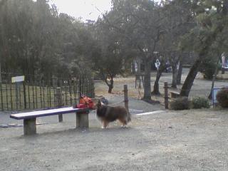 2011-02-05_0000.jpg