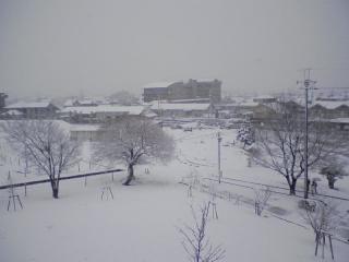 2011-02-11_0004.jpg