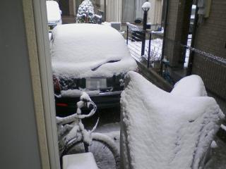 2011-02-11_0008a.jpg