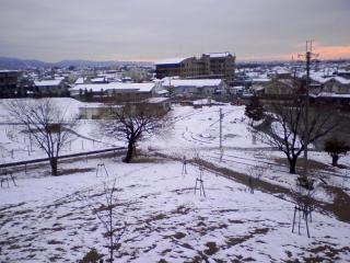 2011-02-11_0010.jpg