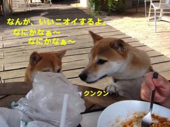 3_20091007001448.jpg