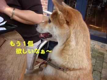 6_20091007001446.jpg