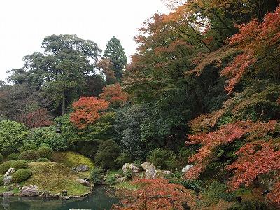 青蓮門院跡のお庭