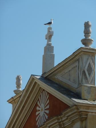 教会の上にカモメ