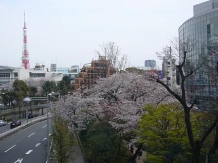 ヒルズから東京タワー