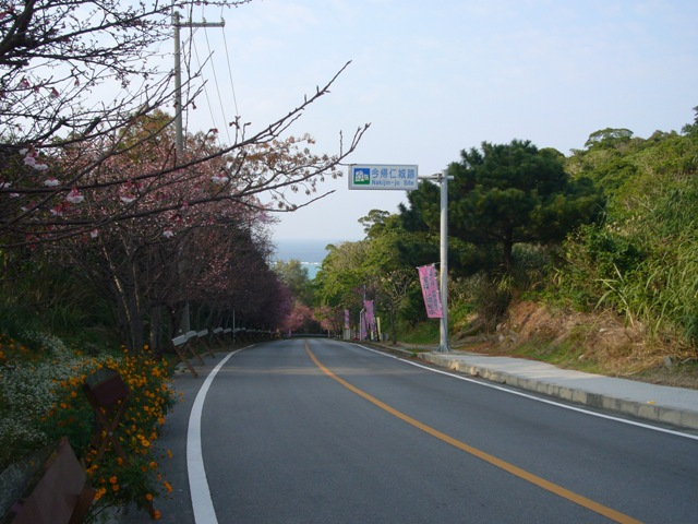 城までの道