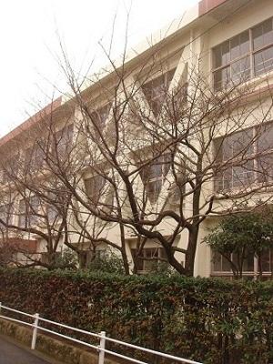 冬の小学校