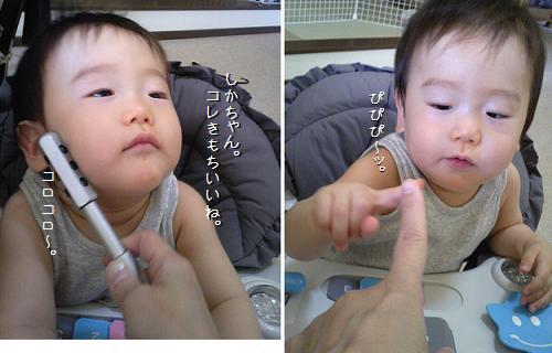 Image3455a.jpg
