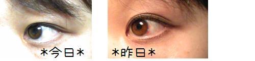 Image4210a.jpg