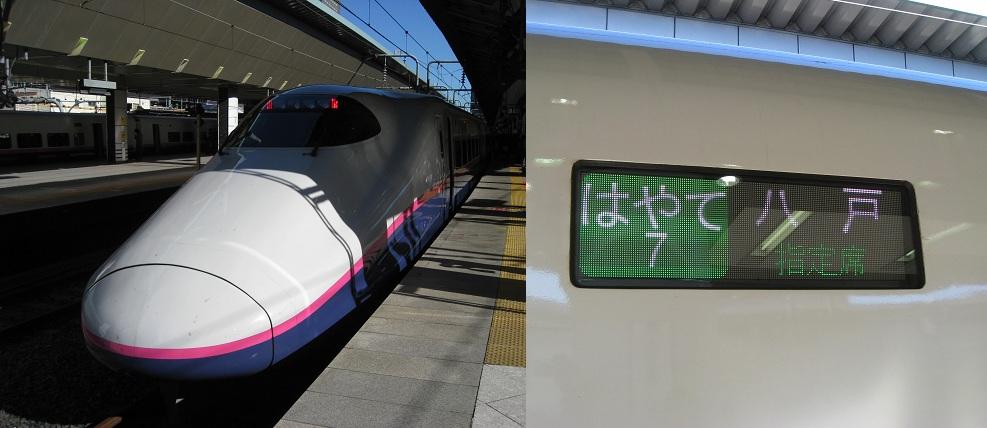 1010青森・秋田 (1)