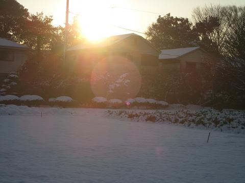 2010初雪 026
