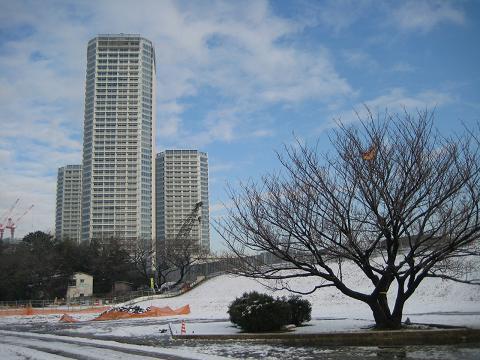 2010雪の朝 009