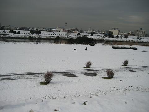 2010雪の朝 059