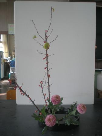 20101018a.jpg