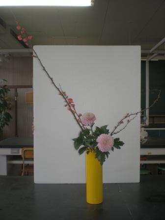 20101215a.jpg