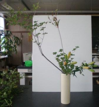 2010702a.jpg