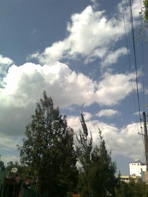 Image0188.jpg