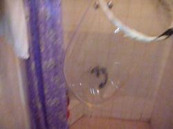 vlcsnap-2011-01-11-00h12m18s220.jpg