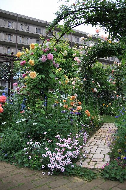 IMG_7582ゆうさんのお庭