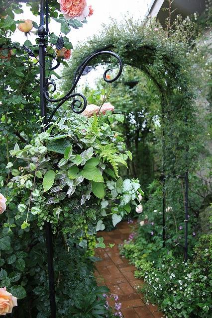 IMG_7906おじむくさんのお庭