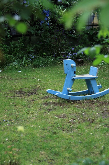 IMG_7939ジェイジェイさんのお庭