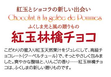 紅玉林檎WEBタイトル のコピー.pdf