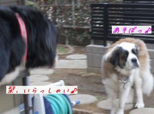 038_convert_20110328100211.jpg