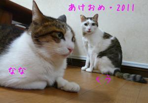 078a_convert_20110101104602.jpg