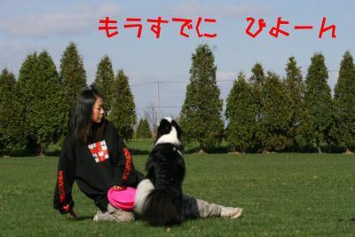IMG_3911_sh01.jpg