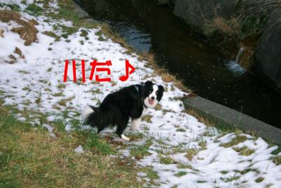 IMG_4509_20091202152108.jpg