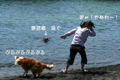 IMG_7050_sh01.jpg