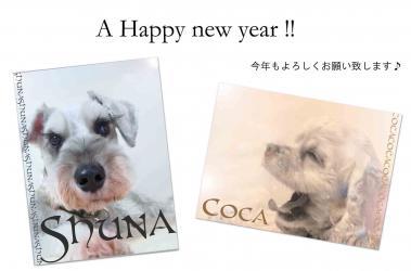 2011年賀状シュナ&コカ_edited-1