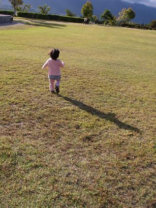 芝生を走る