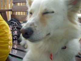 09.22東郷9