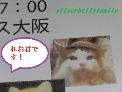 P9190003_20110919005100.jpg