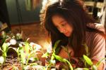 kim-castaway_plants.jpg