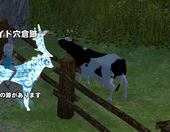ブログ用牛隔離