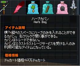 ブログ用水色草鞄