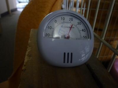 夜の温度414