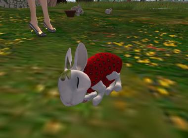 おやすみウサギ