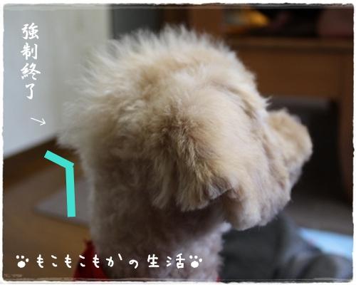 2_20091014225158.jpg