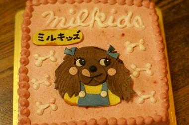 20091129 ケーキ