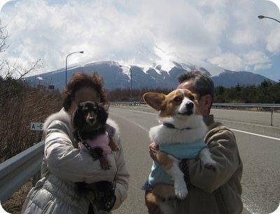 犬と老人と富士