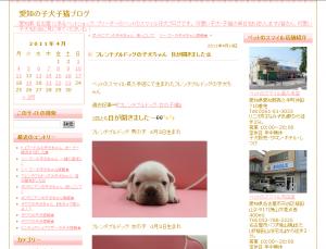 縮小 ブログ画面