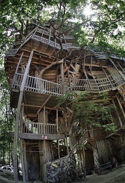 tallest_treehouse_25.jpg